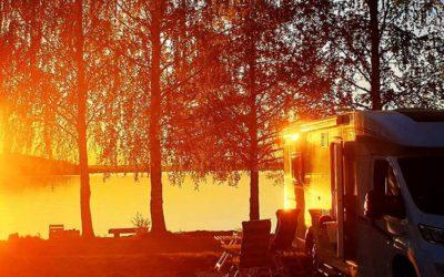 Skog strand i Stråtjära
