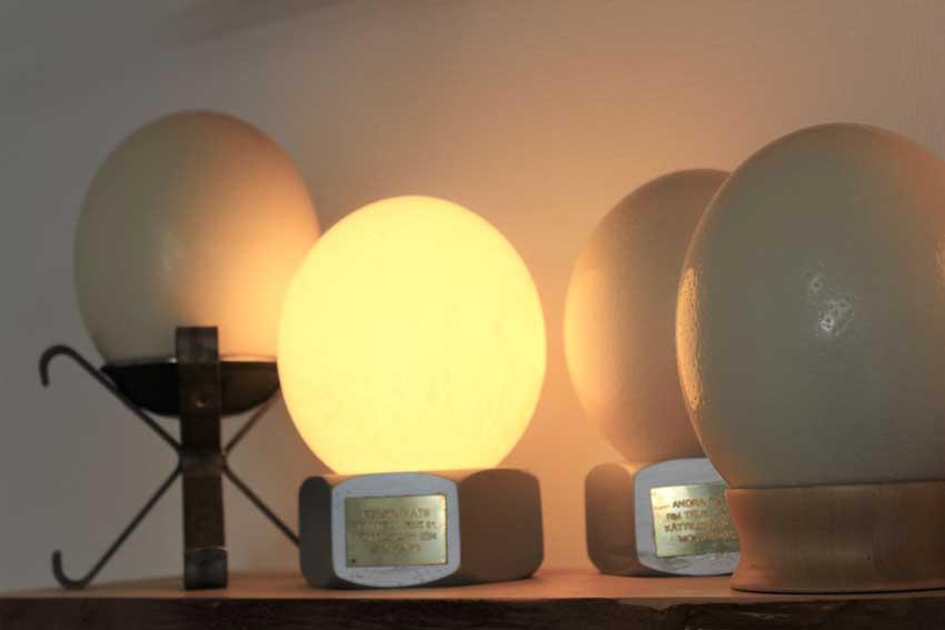 Falbygdens-Struts-ägg-lampor
