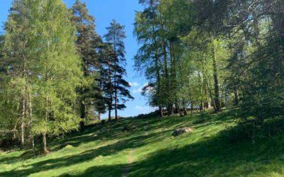 Dunderbäckens naturreservat – Skåne